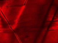 DELMAR Pearl Vintage Red
