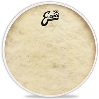 Calftone Snare Batter